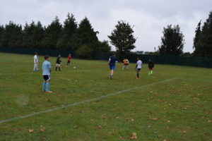 Flat and Well-Drained: the Weyfield Pitch Complex